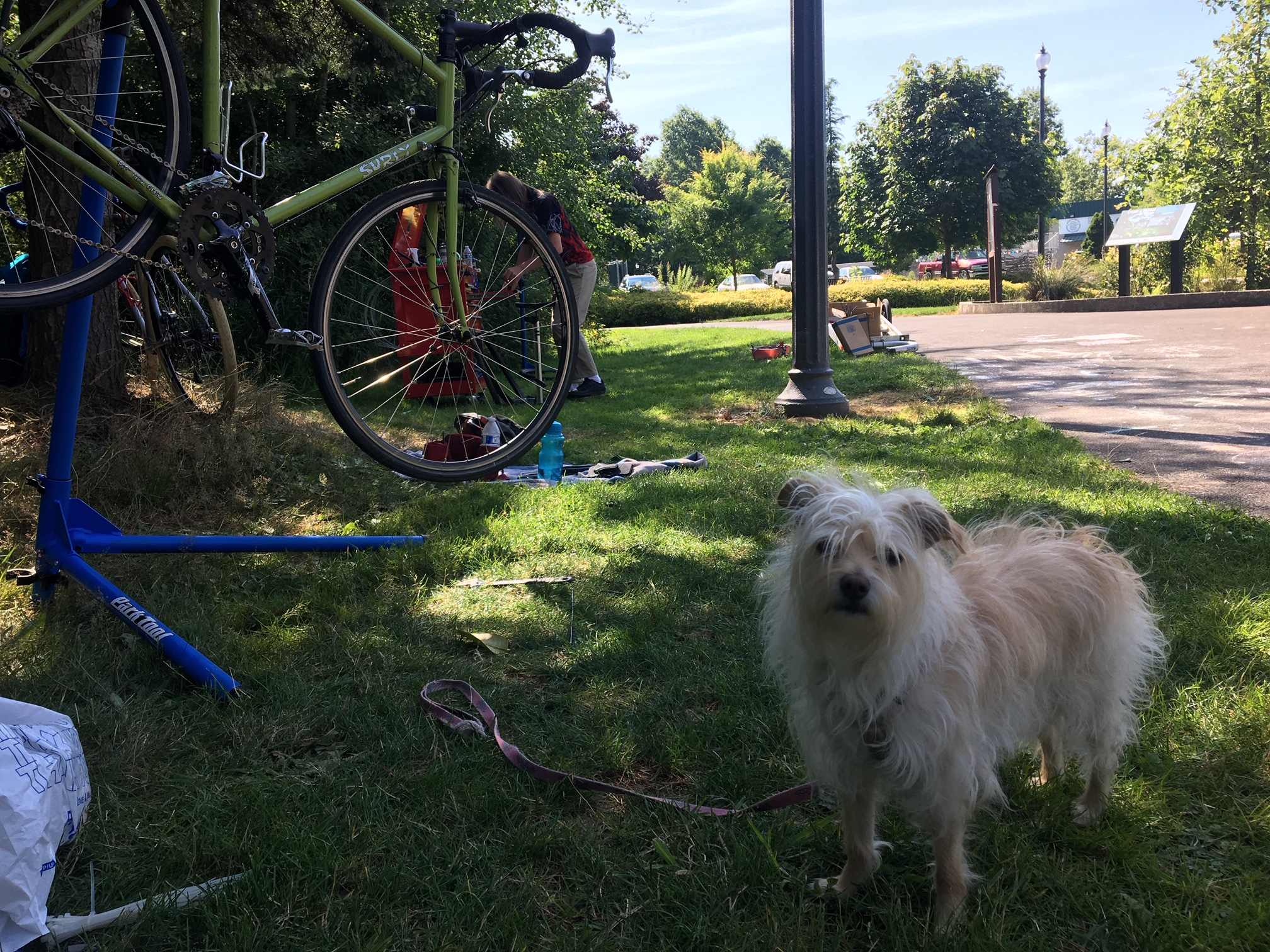 Our lead dog mechanic Angel. her human brandon came to us interested in learning how set up a mobile bike repair shop. he worked with us all summer to see what tools would be needed, what kind of repairs would be encountered, and what strategies would be required to fix bikes in the field.