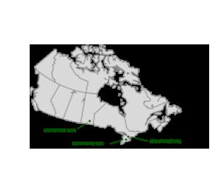 Extensive Canadian footprint