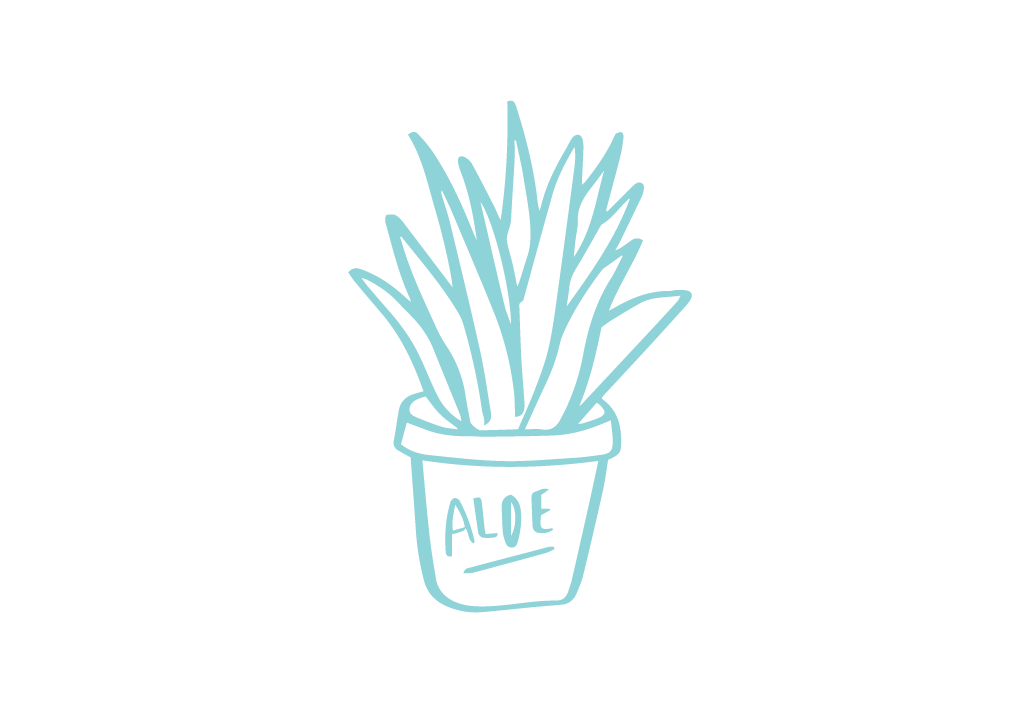 - I have a green thumb...or lack there of. I've managed to keep an aloe plant alive for 7+ years. Don't ask about the others.