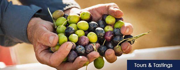 ojai-olive-oil-tours-and-tastings-banner-001.jpg