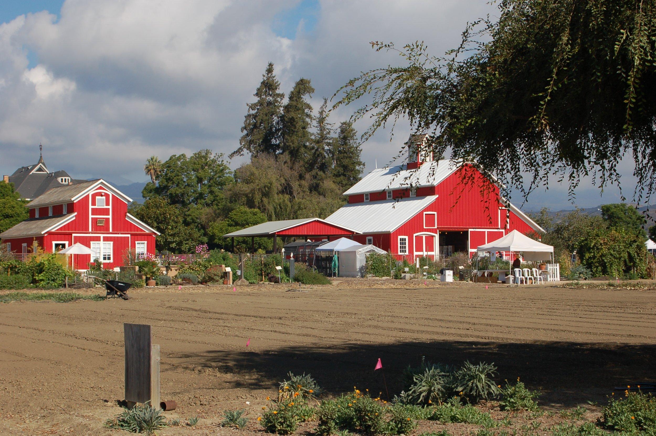 Hansen view to north-barns copy.jpg
