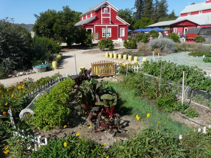 Hansens-Agricultural-Center-Santa-Paula.jpg