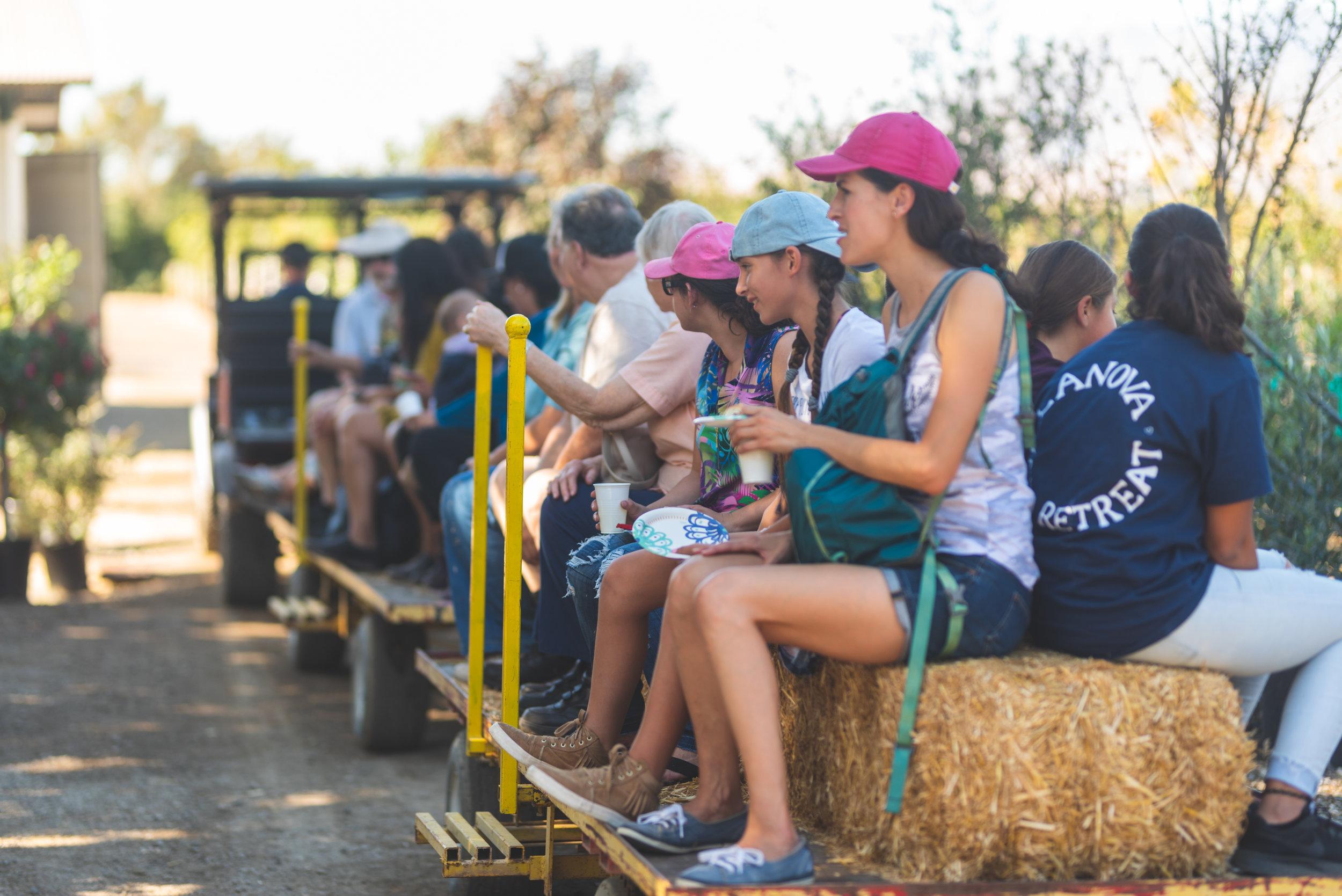 Farm-Day-2018-274.jpg