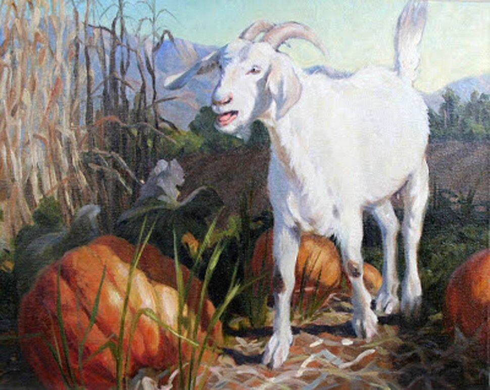 Goat-in-a-Field-by-Gail-Pidduck-01-29-13.jpg