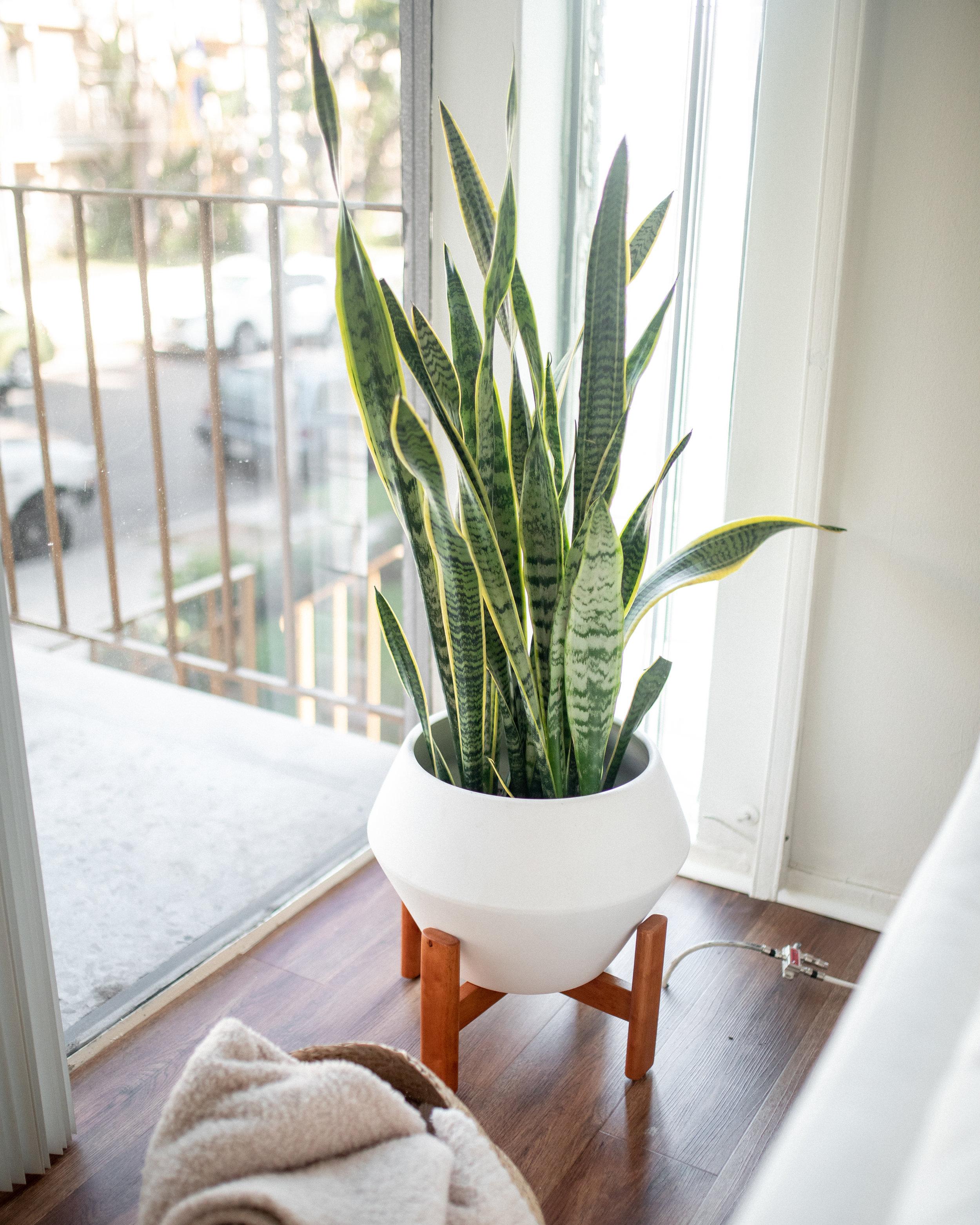 living-room-12.jpg