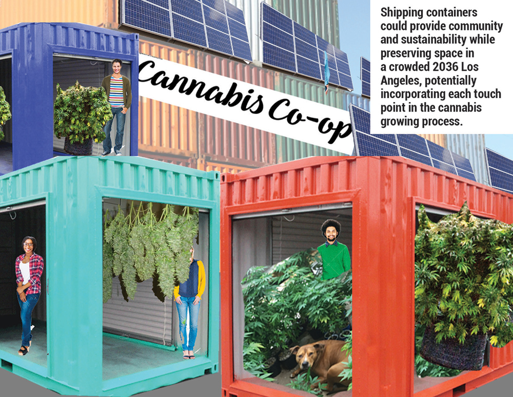 Shipping containers could provide community and sustainability while preserving space in a crowded future Los Angeles, potentially incorporating each touch point in the cannabis growing process.