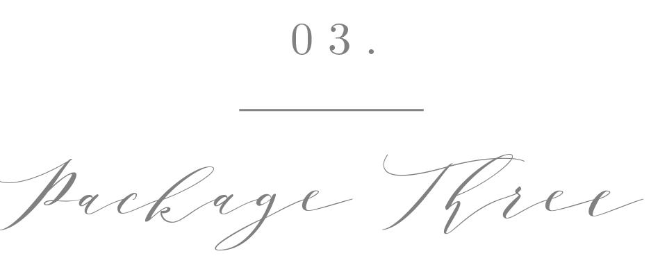 Package Three.jpg