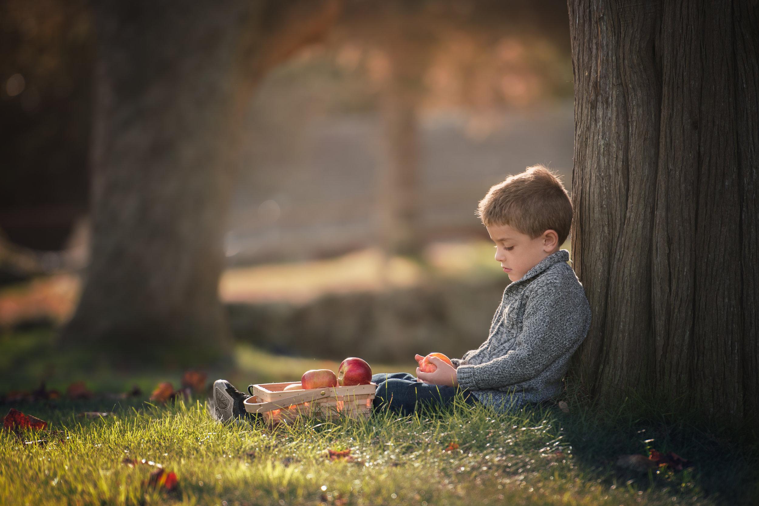 Award Winning Boy Holding Apple by a Tree
