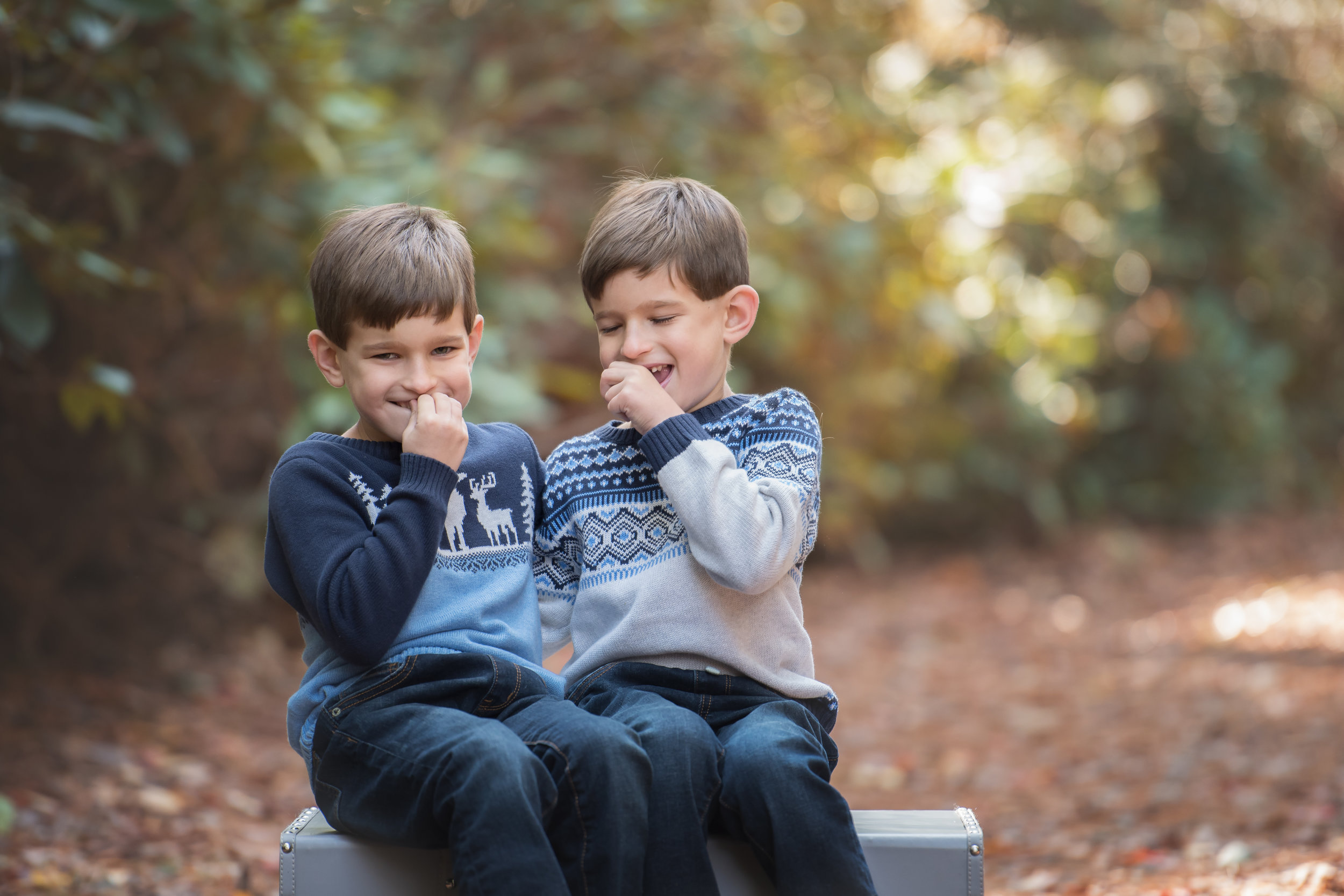 Two Boys Giggling Fall Photo Mini Session