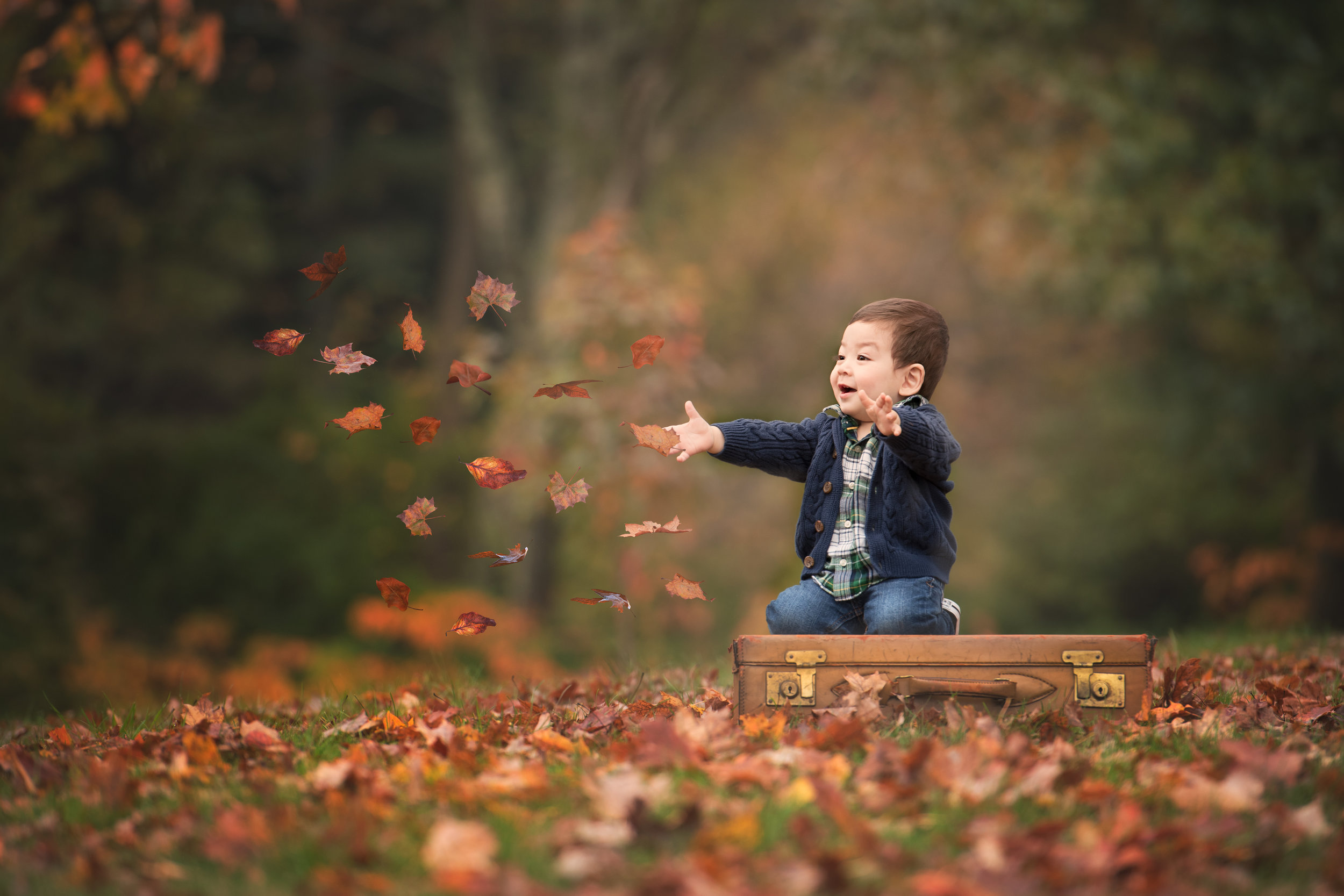 Boy on a Suitcase Throwing Leaves at Governor Ames Estate Easton MA
