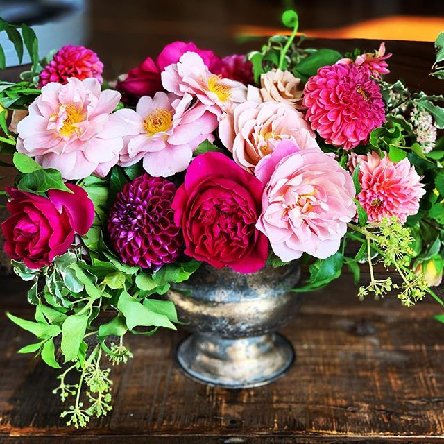 Berry Perfection!  I love roses and dahlias together, and this combination makes my heart happy.  These colors are so versatile! Roses: @gracerosefarm  Dahlias: @hellobuttercupflowers & @petalpickers