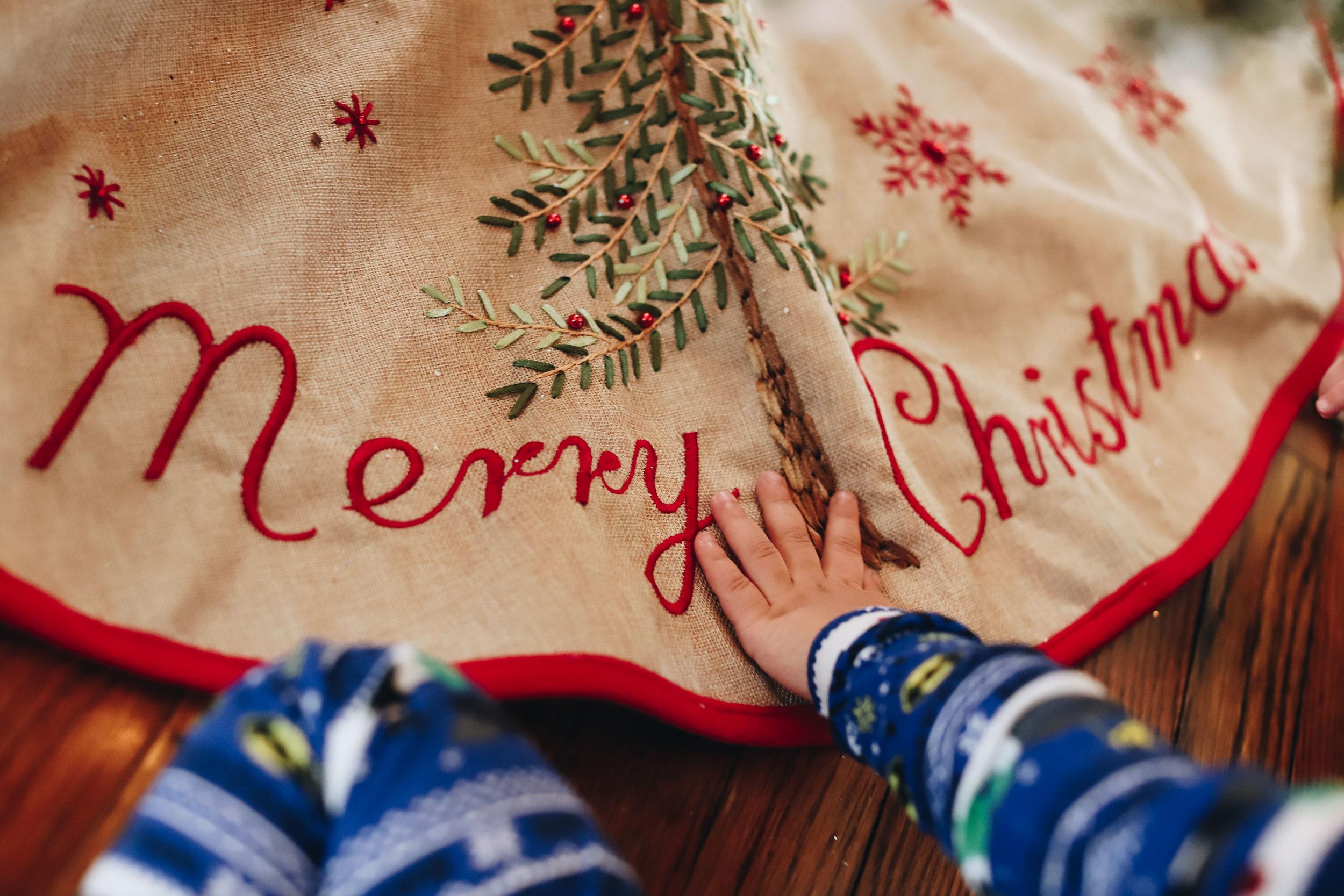 180912_Erin_Gerry_Christmas_home-44.jpg