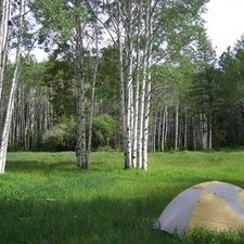 - where to camp