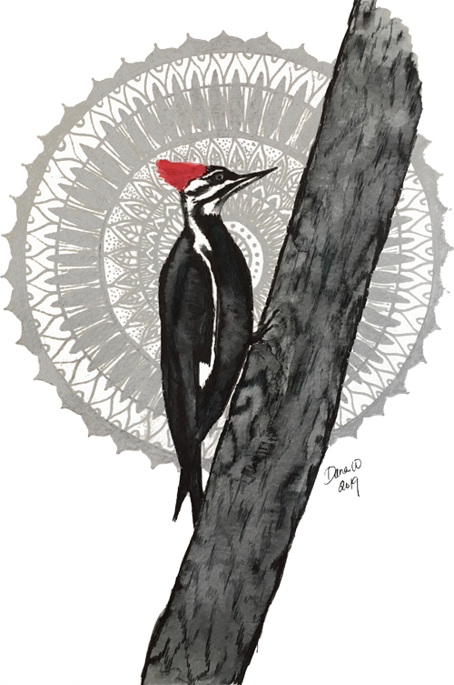 woodpecker2019.small.png