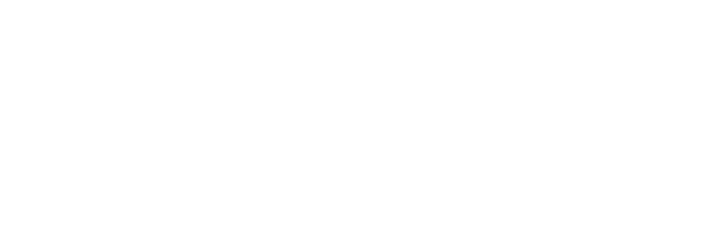 Digital Design-logo-white.png