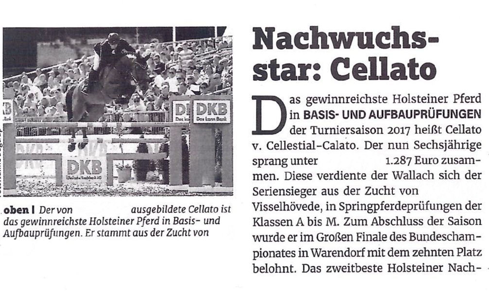 (Article written on Cellato after 2017 German Championship show)  Rising Star: Cellato  The most successful Holsteiner of the 2017 show year for young horses is Cellato who is by Cellestial and Calato. This six year old gelding and his rider (call for more info.) won 1.287 Euros. This series winner is bred by (call for more info.) and has won his prize money solely in the young horse shows from levels A through M. He finished his successful season with a tenth place at the German Bundeschampionat (German Championship for young horses).