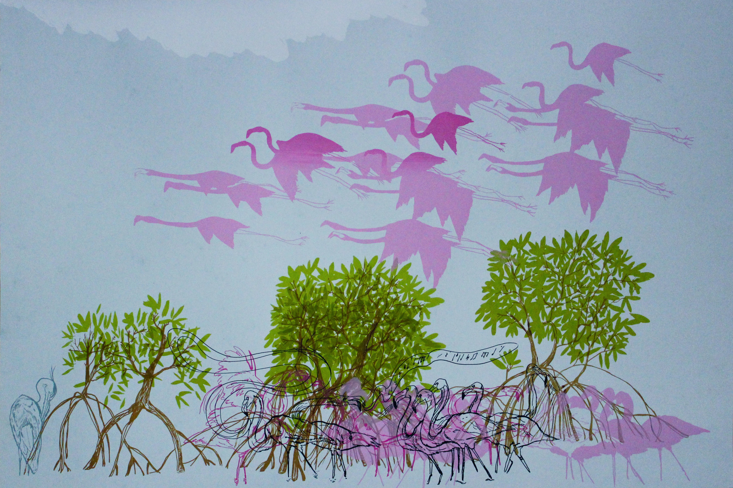 """Flamingos and Mangroves"""