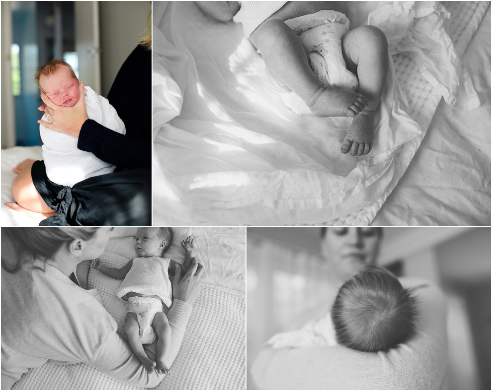 melbourne family newborn photographer_0469.jpg