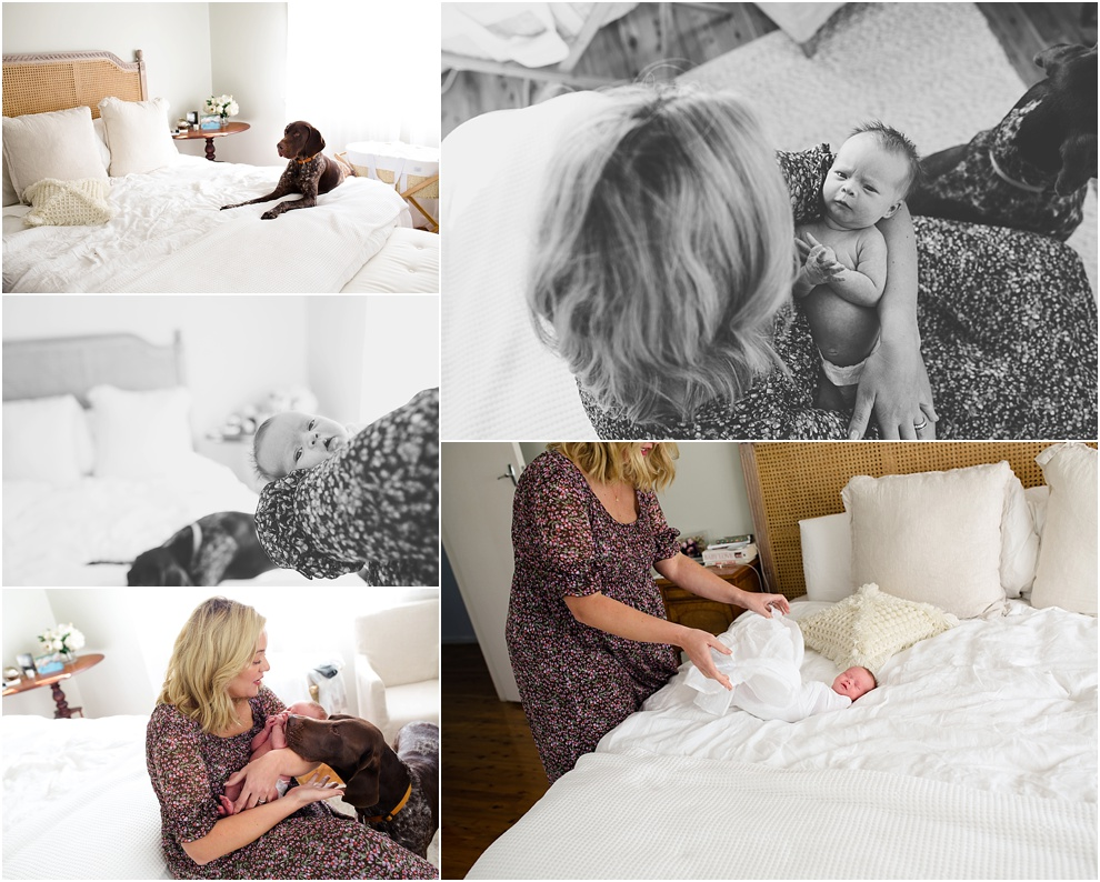 melbourne family newborn photographer_0495.jpg