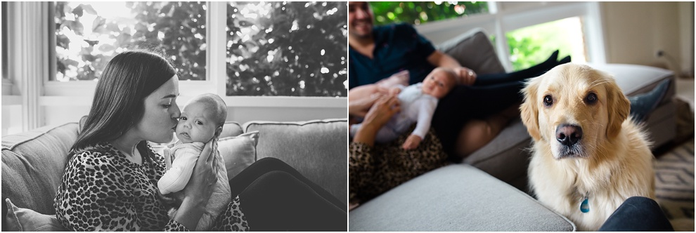 melbourne family newborn photographer_0576.jpg