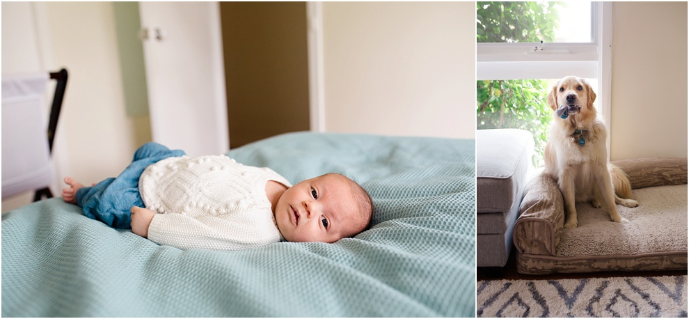 melbourne family newborn photographer_0586.jpg