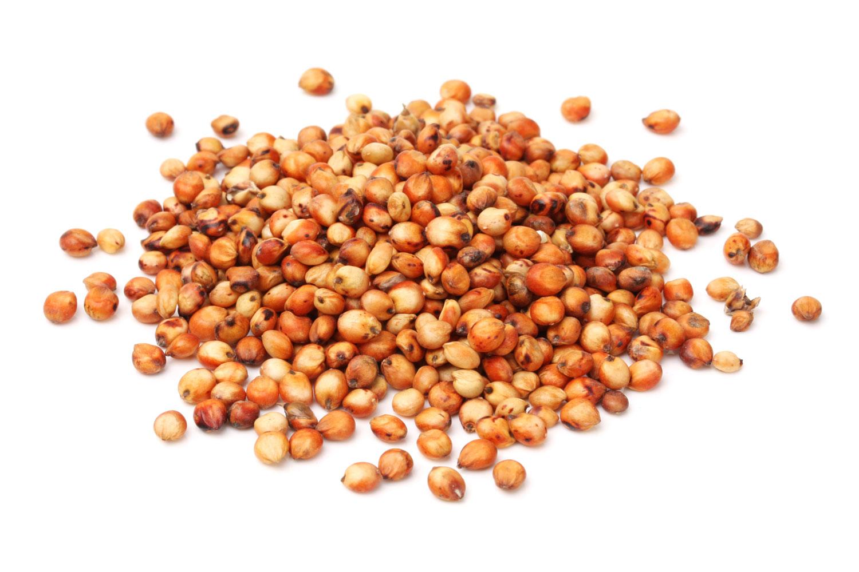 20140203-grains-sorghum.jpg
