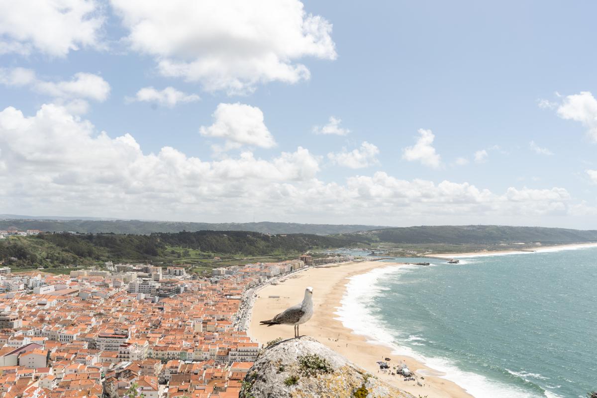 Portugal180429-5381.JPG