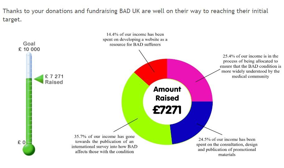 Fundraising Totals.jpg