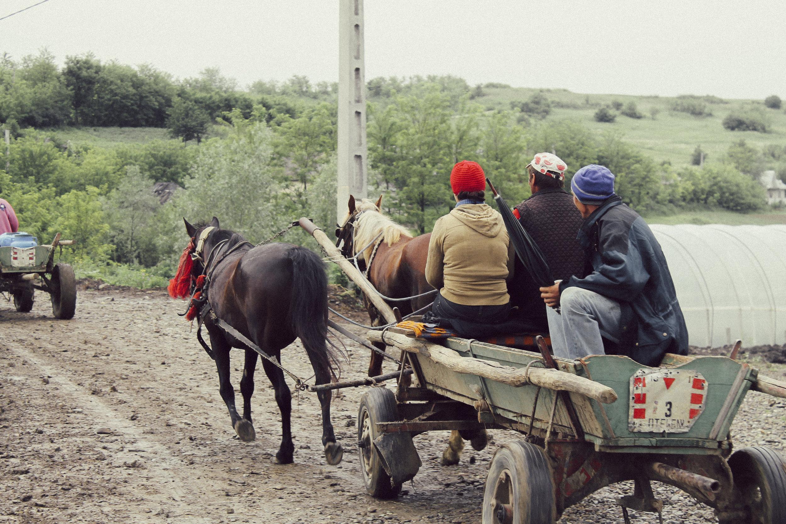 """Die Equiwent Hilfsorganisation kümmert sich hauptsächlich um die Arbeitspferde in Osteuropa, aber auch in anderen Ländern aktiv und in Deutschland. Equiwent ist mit drei eigenen mobilen Tierarztpraxen und 2 mobilen Hufschmieden in Ostrumänien (nahe der Stadt Iasi) der Ansprechpartner für unzählige Arbeitspferde. Seit Oktober 2015 betreibt Equiwent auch nun die erste """"Non-Profital-Tierklinik"""" in Rumänien, vermutlich die erste in Europa. Ein nachhaltiges Kastrationsprogramm für die Hunde der mittellosen Landbevölkerung senkt die Anzahl der Strassenhunde.  Außerdem hat Equiwent eine umpfängliche Station in Deutschland, Tierärzte und Hufspezialisten kümmern sich hier um Pferde in Not, beschlagnahmte Pferde usw.. Von dieser """"deutschen Hauptstelle"""" werden die welweiten Einsätze koordiniert. Beispielsweise USA, Afrika; China, diverse Inselstaaten usw…   Zurück zum Hauptprojekt Ostrumänien: Der erste Schritt ist stets die medizinische und orthopädische Versorgung der Arbeitspferde, sowie der Ergänzug von fehlenden Ausrüstungsgegenständen zB Halfter und Gebisse. Der zweite Schritt ist die Schulung und Sensibilisierung der Besitzer. Das besondere an den Equiwent Hilfe e.V. ist die ehrenamtliche Organisation. Equiwent besteht aus Tierärzten, Fachkräften und Hufschmieden. Das macht uns zu etwas besonderem!"""