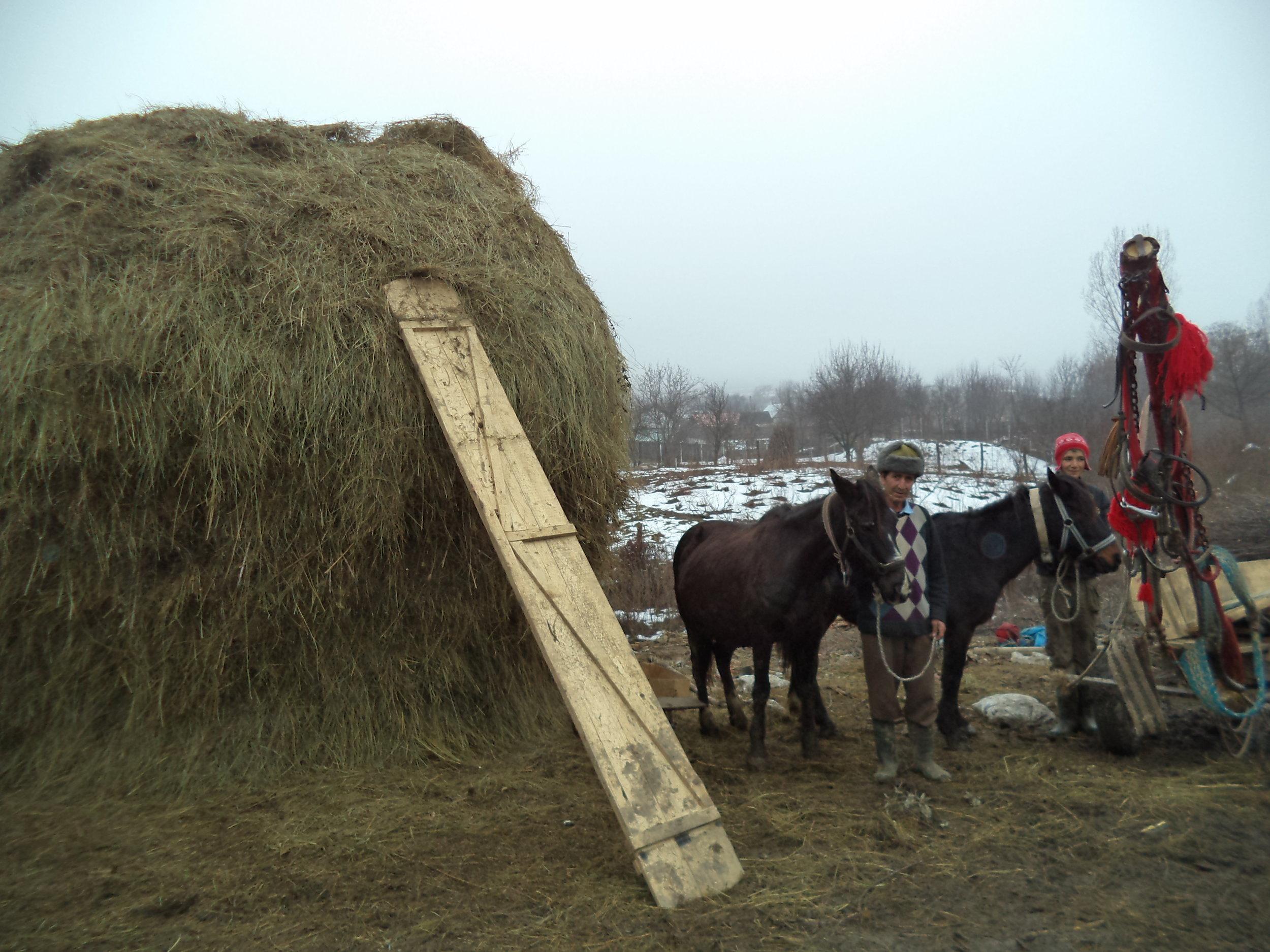 die Besitzer haben viel Heu für den harten   Winter gemacht und zeigen uns stolz ihr Ergebnis.