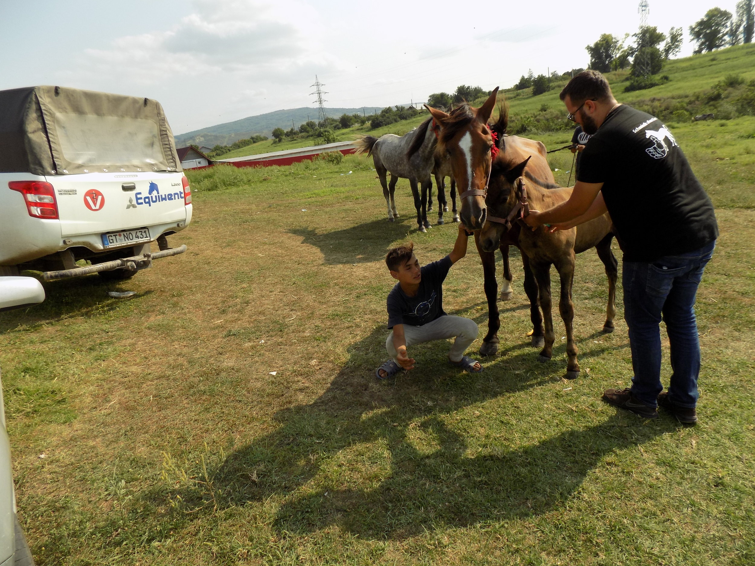 Unsere Pferdetierärzte sind täglich unterwegs, manchmal über 150 km von der Klinik entfernt…