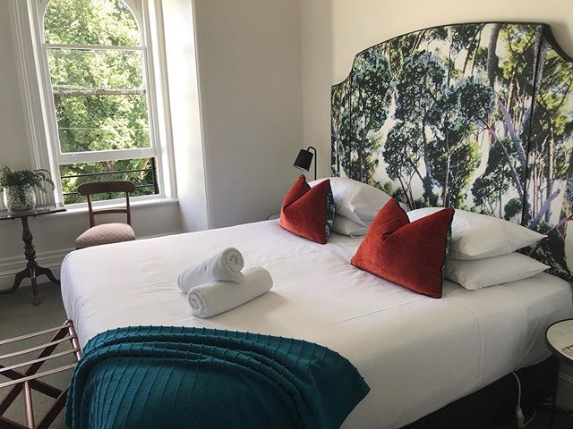 Our King Suite Room has direct views of the exquisite oak trees inside Launceston's City Park. The Florance is just a five minute walk away from the heart of the CBD. • • • • • #discovertasmania #accommodationlaunceston #uniquehotels #boutiquebedandbreakfast #citypark #designtasmania #heritage #bandb #theflorancetas #launceston #tas #tasmania #airbnb #travel #accommodation #breakfast #hotel #unique #boutique #garden #cityparklaunceston  Please contact us at: 0457 171 777 for more information