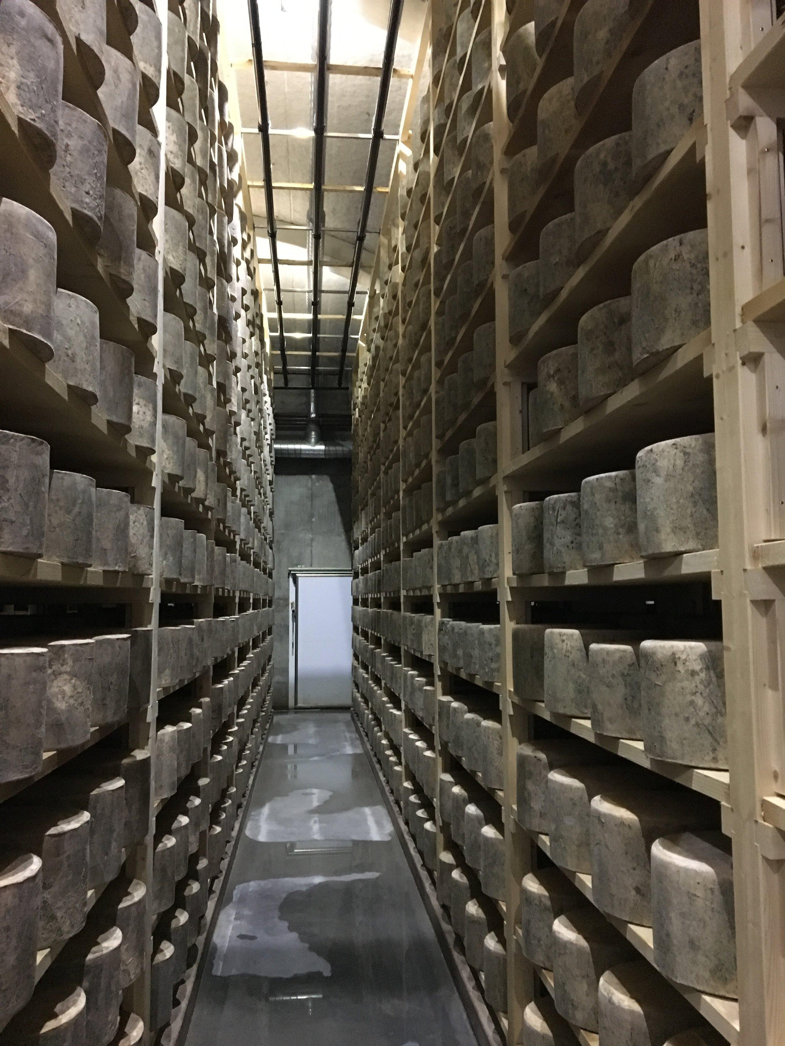 Westcombe Dairy -