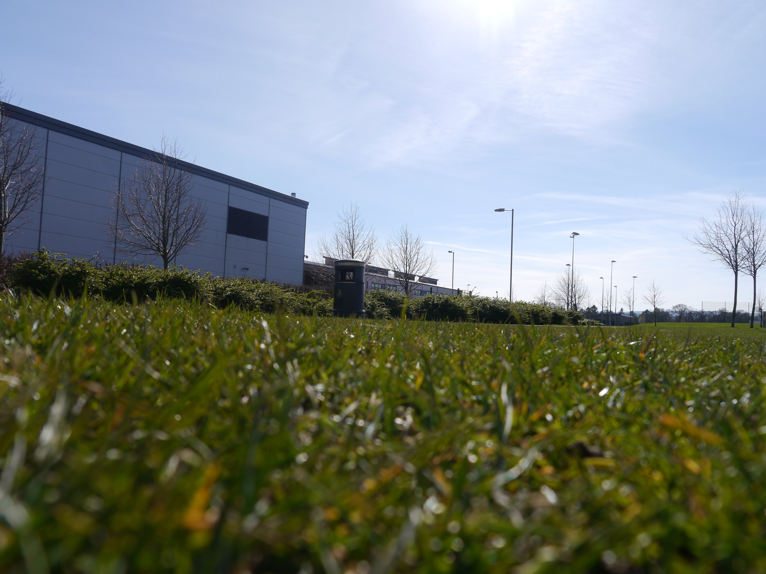 Grass Pitch Ground to Campus 3.JPG