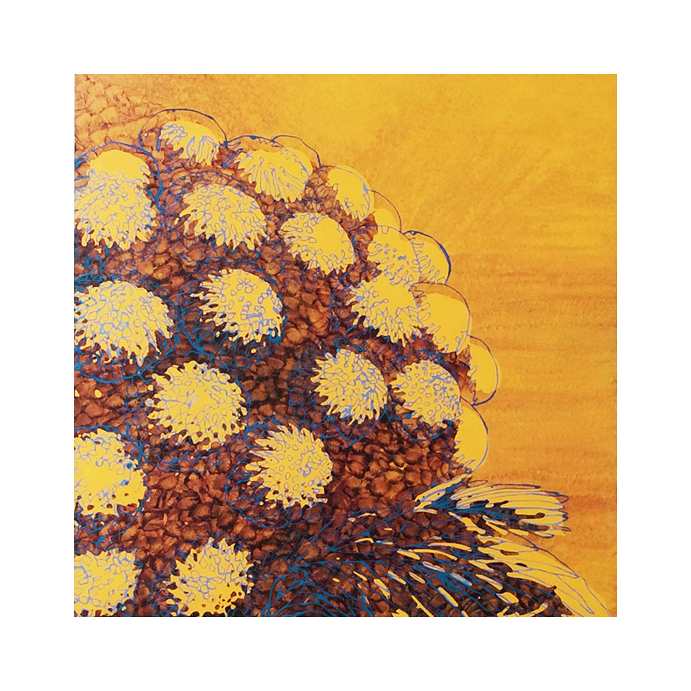 Sole Giallo #3_ oil on alluminium_email_ 100 cm x 100 cmm _2018.jpg
