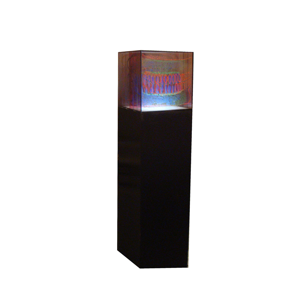 16_Diatom_ 7 layers of painted and fired glass with LED light panel and wooden pedestal_30 cm x 30 cm x 30cm_2013.jpg