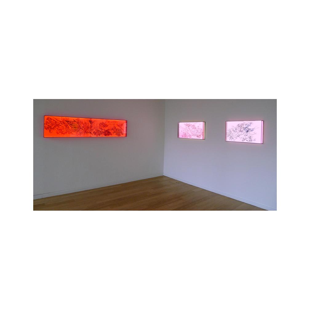 08_Oriental Luminescence_Crimson Flora_200 cm x 46 cm x 10cm_2012.jpg