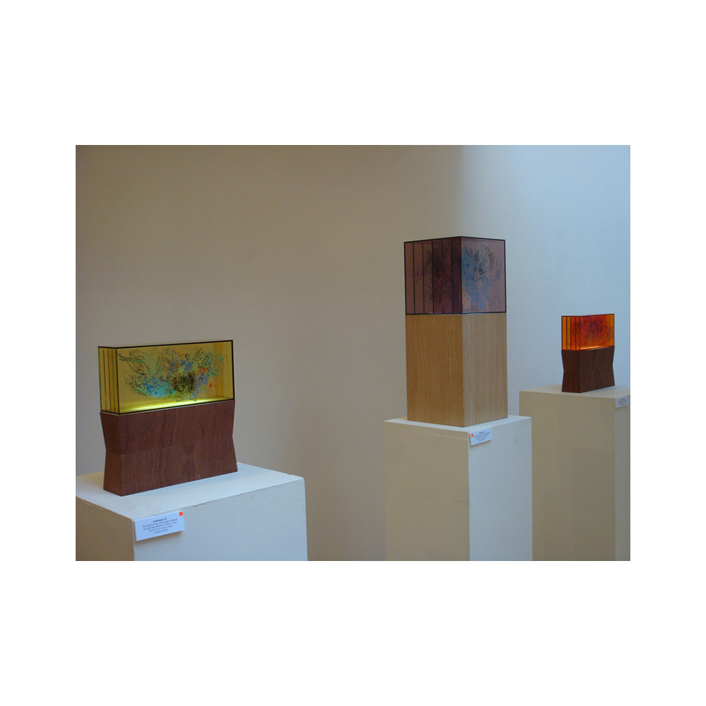 01_Luminous exhibition image_Coningsby Gallery London_2011.jpg