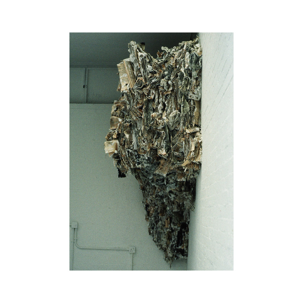 05_Land Mass_paper and plaster 200cm x 150 cm.jpg