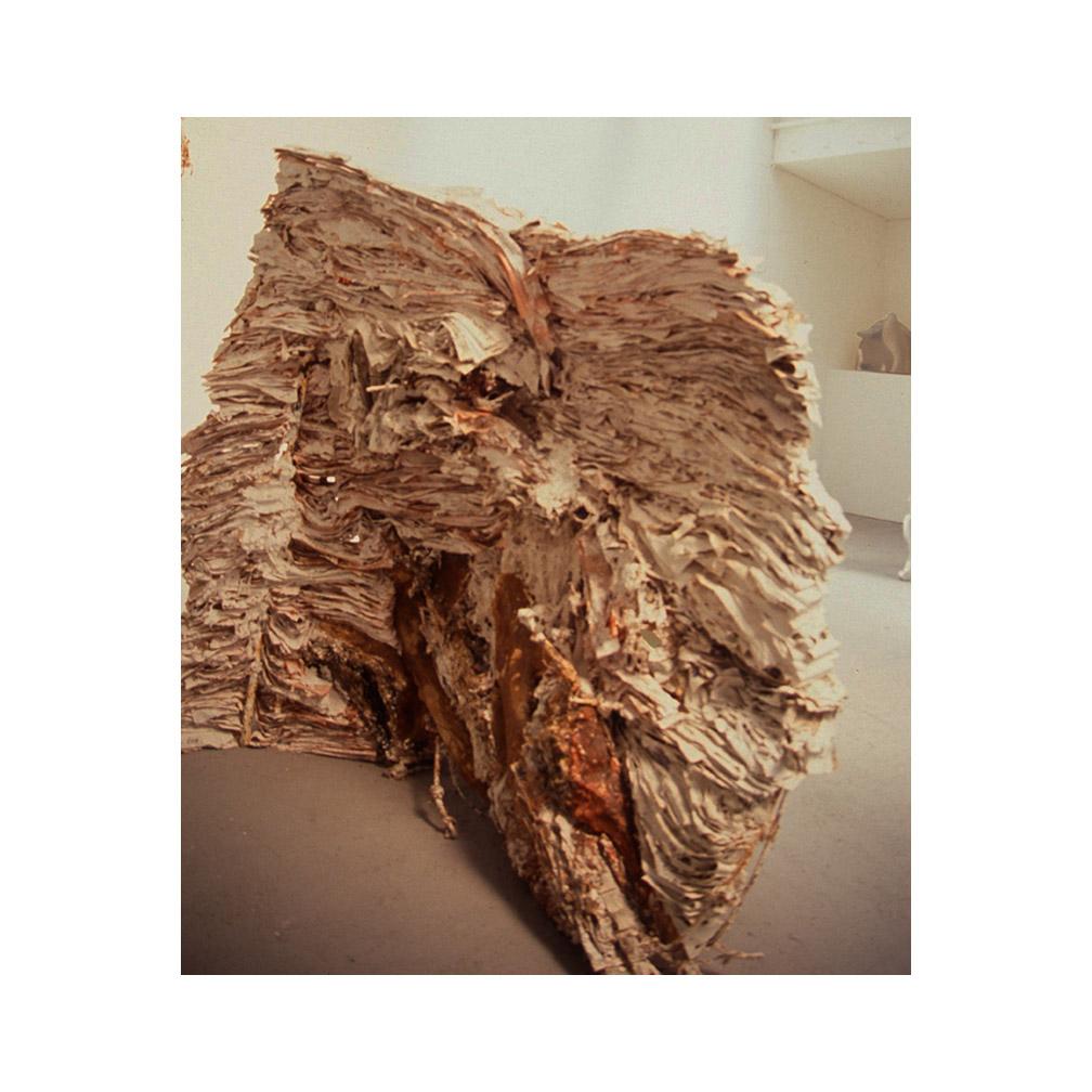 03_Land Mass_paper and plaster 200cm x 150 cm.jpg
