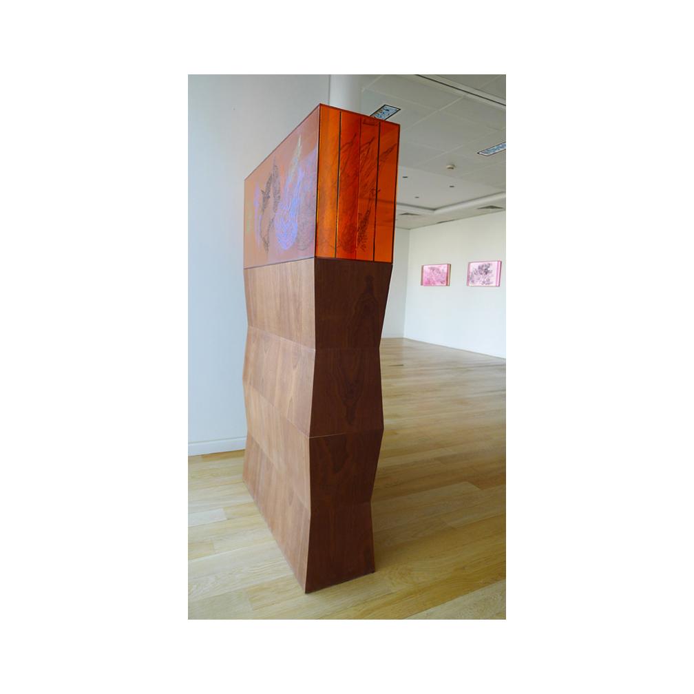 22_Oriental Luminescence_Orange Pavilion_100 cm x 46 cm x 30 cm_ Oak pedestal 120cm x 100 cm x 30 cm_2012.jpg