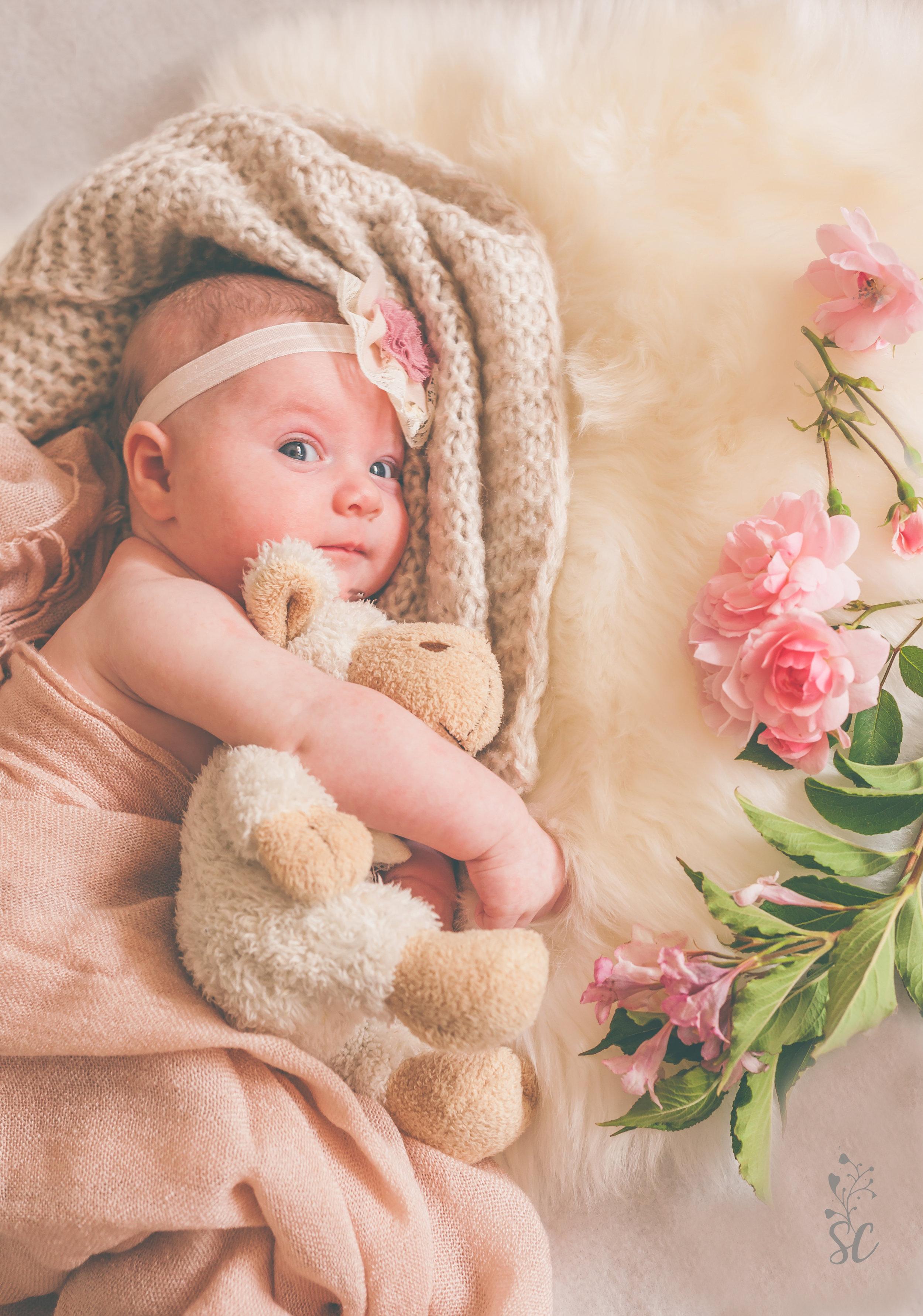 Newborn   View more ➝