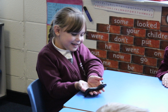 Key Stage 1 had the chance today to meet some wonderful critters today. Zoolab brought along with them a millipede...