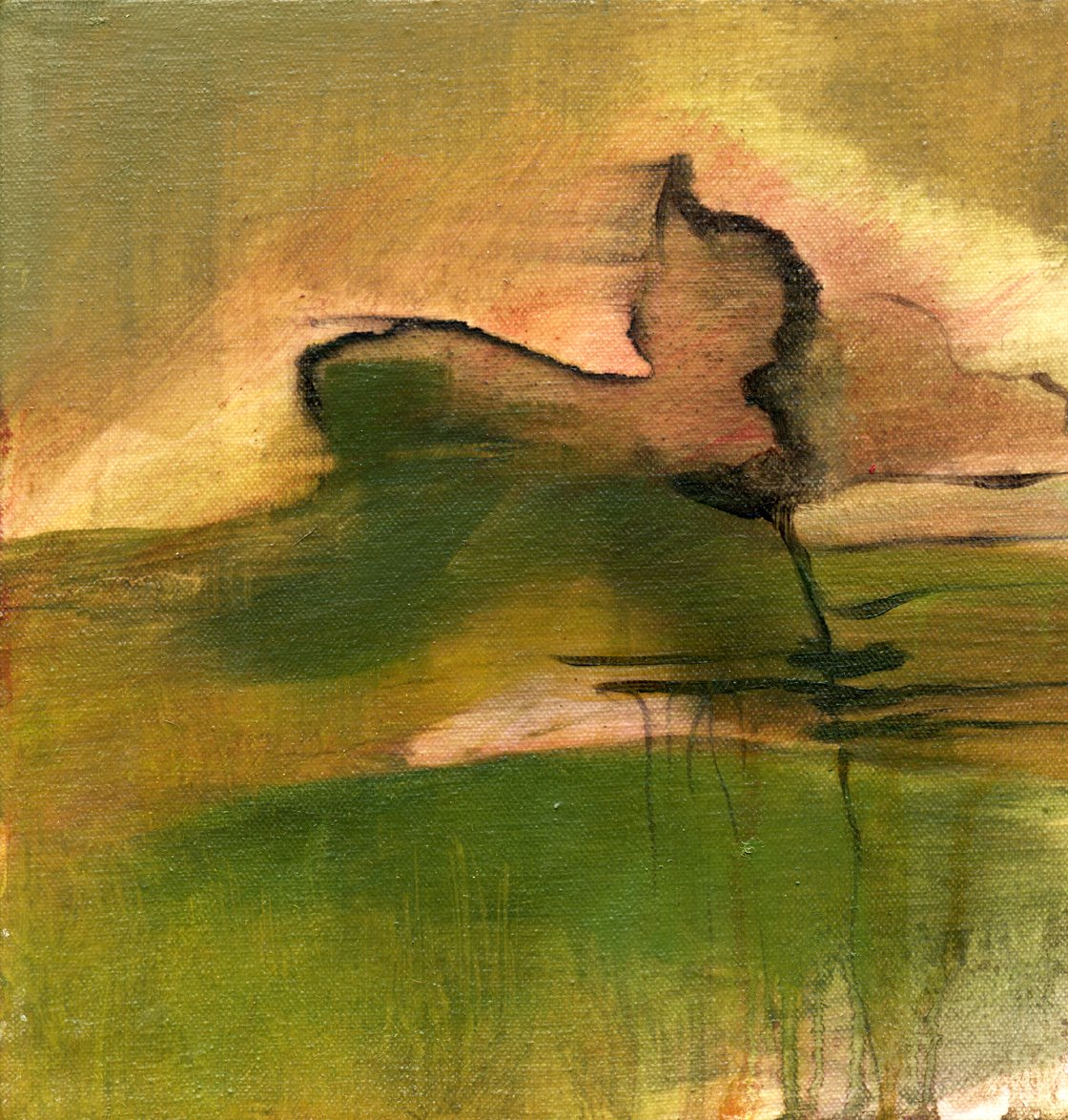 Imaginary Landscapes  series (2004-5). Ink & oil on canvas.
