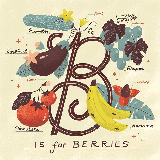I recently learned that strawberries and every other fruit I thought was a berry aren't actually berries but 🥒 🍅 🍌 🍇 🍆 and 🥑 are. Ha!