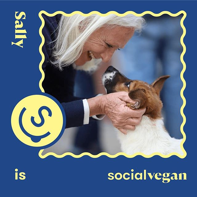 Meet SocialVegan - Sally @hkdr_official (Part 1️⃣) . A lot of us love dogs 🐶 and cats 🐱 but living in a city, it may be more difficult for us to feel the connection with cows and pigs and chickens 🐮🐷🐔. With dairy and eggs, it's even harder for people to see through the façade of happy cows and free roaming chickens and recognise the #cruelty behind 🙊. From being a dog-lover, Sally has built connection with pigs triggered by vicinity, and eventually with other #animals towards her journey of veganism. . It will take time and efforts to change your #lifestyle , but the key is to embrace knowledge and be #conscious of what your actions mean. Thank you Sally for sharing your inspiring journey with us 🤗! . 👩🏼Who are you SocialVegan x HKDR Founder/Chairperson x Founder and Ex-owner of The New Age Shop . 🐾SocialVegan type My journey towards #veganism started in 1986 when I moved to Lamma, and right next to a pig farm. I could see and touch the pigs, and hear their screams as they were loaded in body cages onto sampans heading for slaughter. I tried to drown out the sound with fingers in my ears and singing loudly, but I couldn't get rid of it. I stopped eating pork, and quickly followed with all 4-legged animals, but it took longer to give up chicken and fish. I tried to convince myself that buying free-roaming chickens and their eggs made it OK, but in the end I just stopped all together. I've now been #vegan for about 2 years, maybe 3, but I'm not a devout label reader, in part because my eyesight is poor and I would have to keep fishing out my reading glasses. However I know pretty much now what's vegan, and these days it's so much easier having more and more vegan food available in regular supermarkets, as well as the obvious vegetables. Luckily I love fresh greens and could happily eat a plateful for my dinner. . I still have many meat-eating friends and don't judge what they choose, at least not openly. I hope they will gradually make the decision for themselves, helped by the huge #media coverage of the benefits in so many way of not consuming meat or dairy. . #socialveganhk #veganhk #govegan #crueltyfree #vegansofig #animallover #veganfortheanimals
