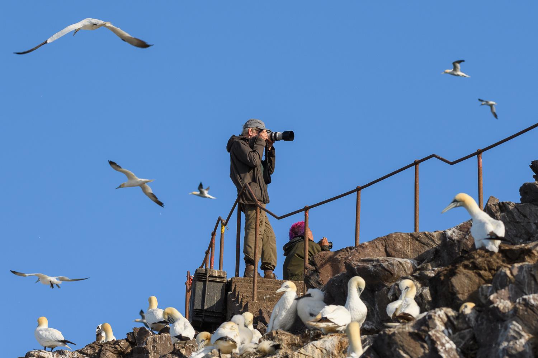 Photographers on Bass Rock