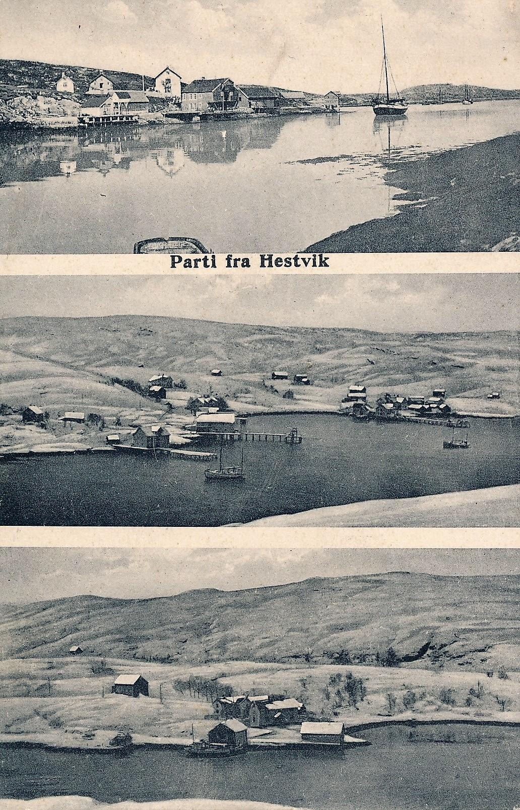 Et gammelt postkort fra Hestvika. Teksten som følger er fra Trondhjems Adresseavis 1923.