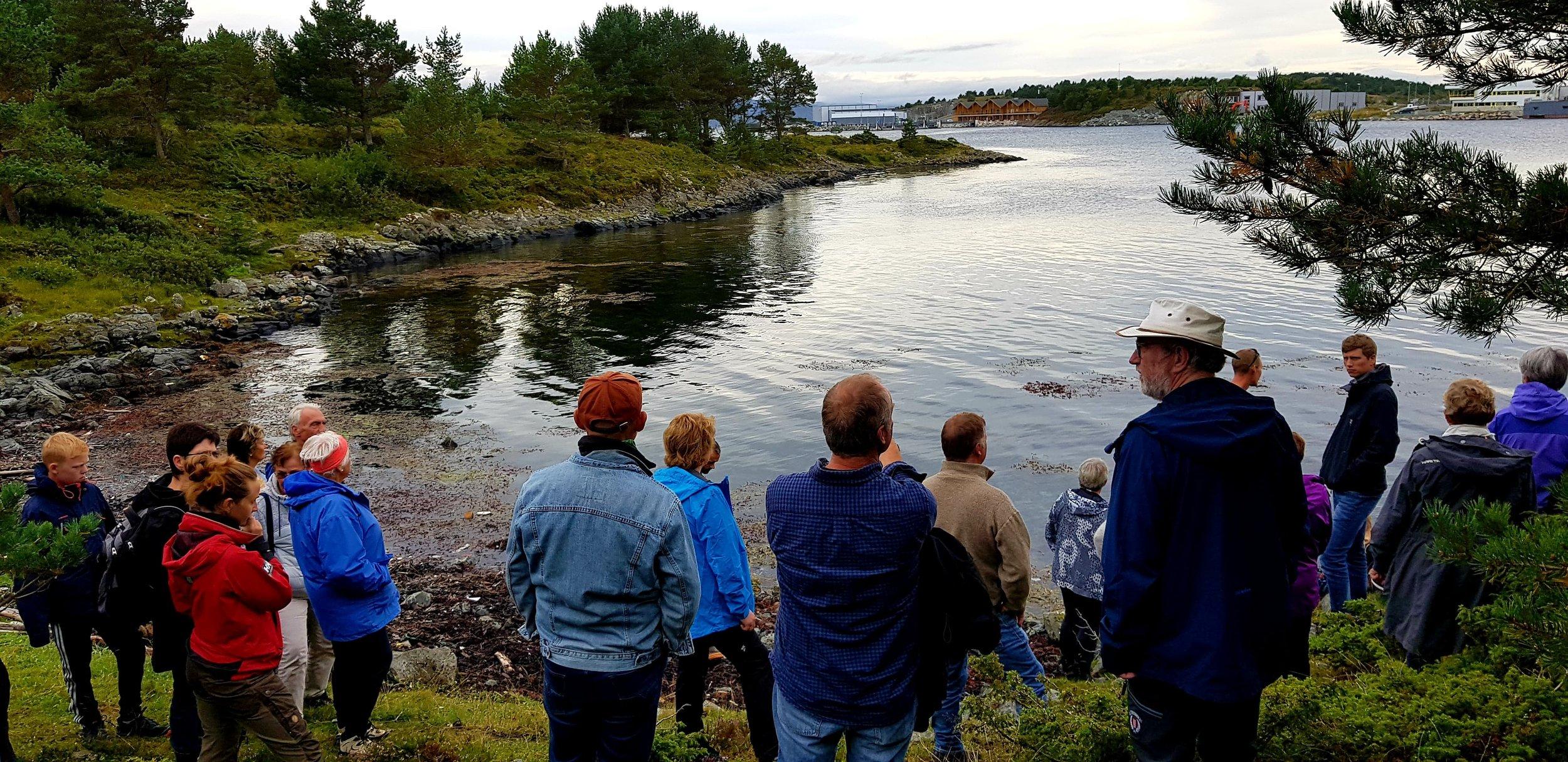 Ved enden av stien som går tvers over Aunøya. Her ved Jektneset hvor det er snakk om ny flytebrygge. I bakgrunnen hurtigbåtterminalen på Jøsnøya.