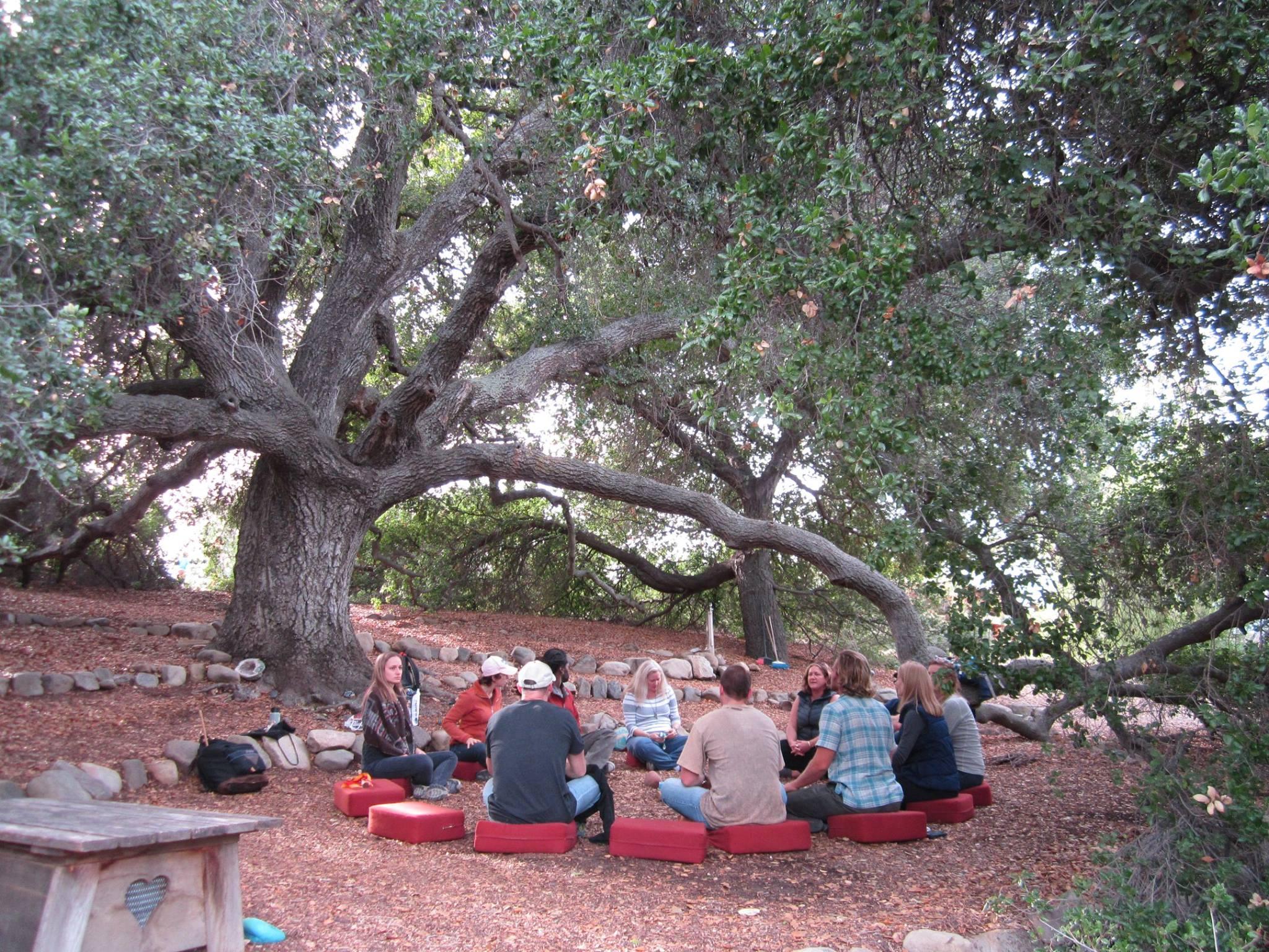 council under Ojai oak tree.jpg